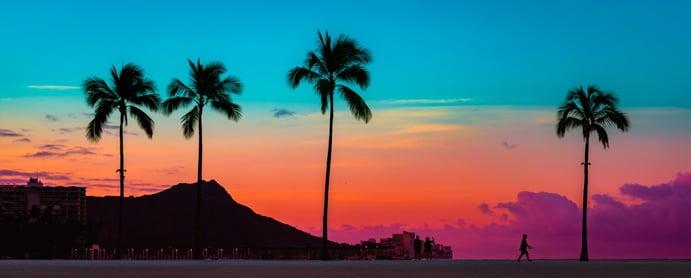 Palm trees with Hawaiian Sunset_AdobeStock_272038968-1