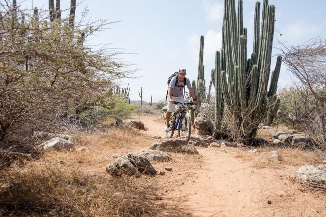 biking verizon incentive trip